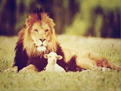 Image - Lion & Lamb