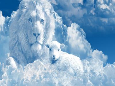 Image - Lion & Lamb - Sky
